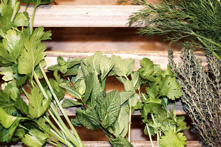 Fresh cut herbs including mint, parsley, thyme and dill